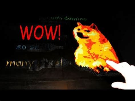 Doge: Video Gallery (Sorted by Favorites) | Know Your Meme