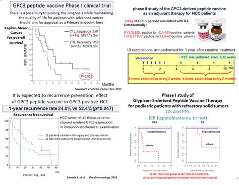 Development of cancer vaccine therapy | Exploratory Oncology Research and Clinical
